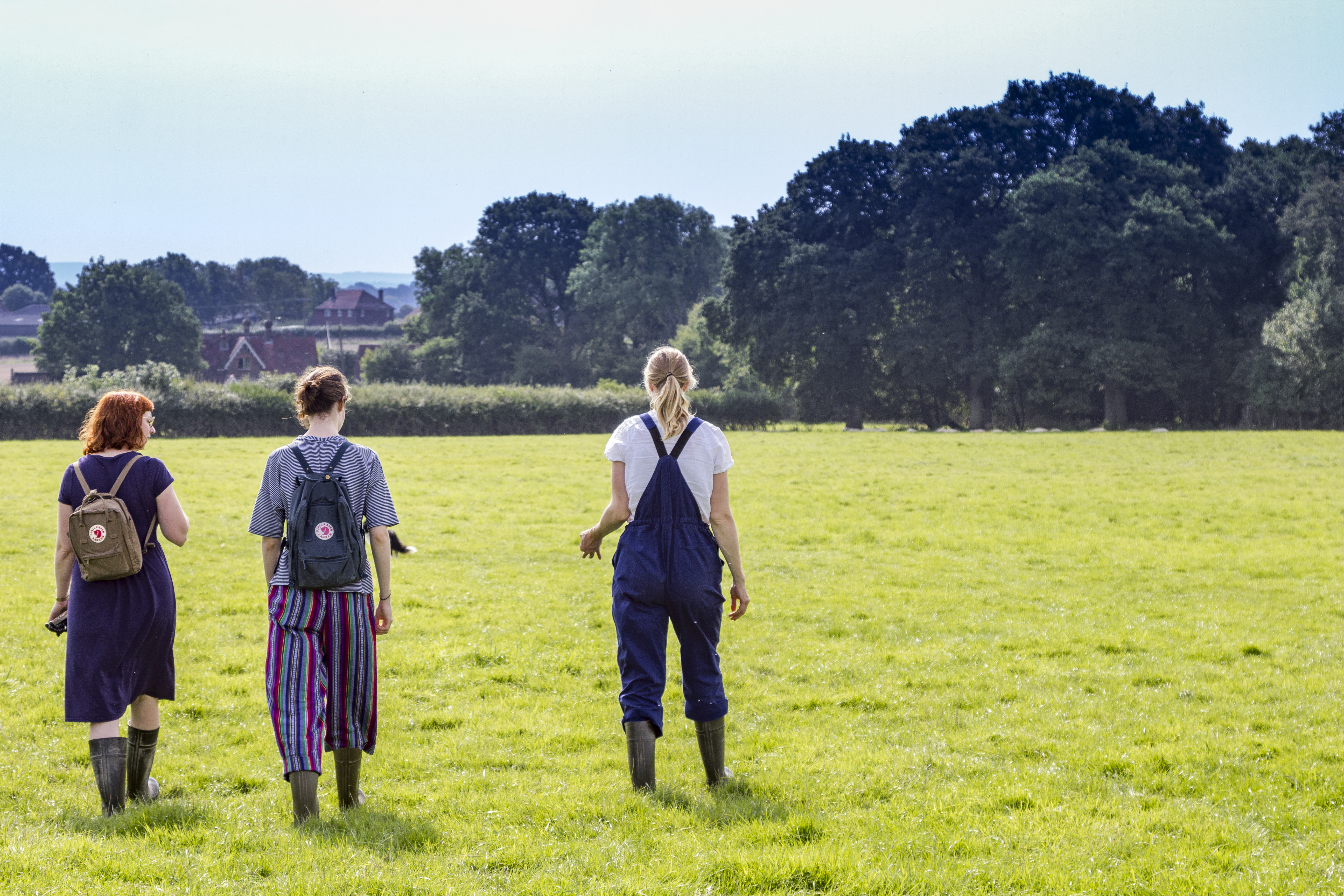interview with a shepherdess  - Barcombe Romney