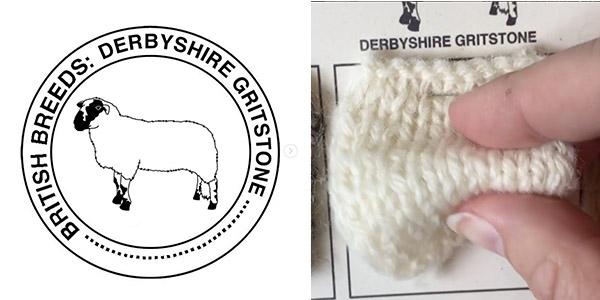 Derbyshire Gritstone