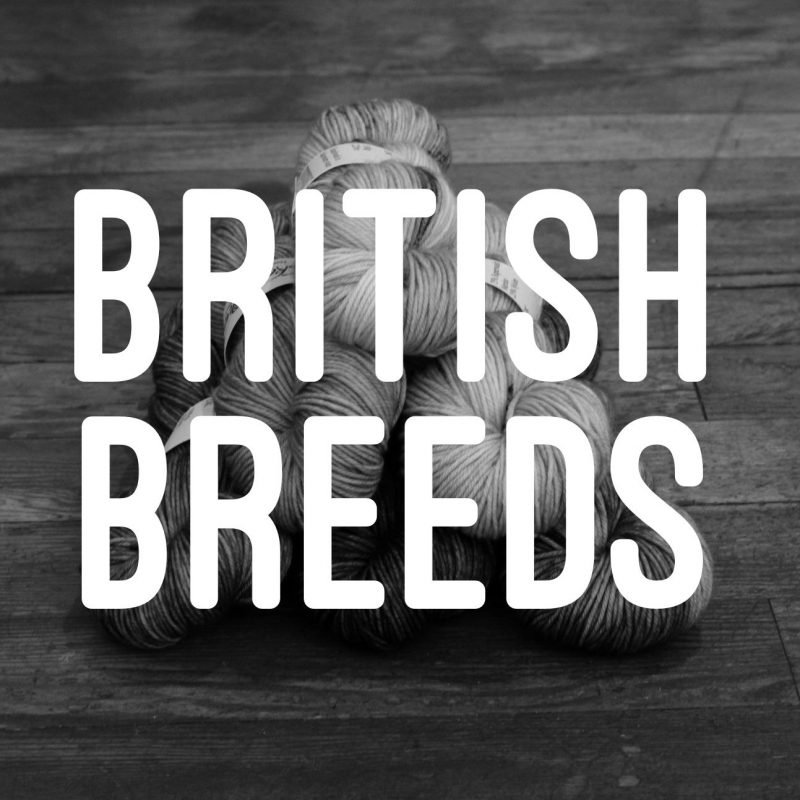 British Breeds